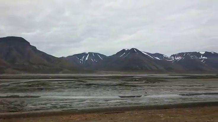 Панорама в Лонгйире (Свальбард, Норвегия), собачья упряжка едет по дороге.