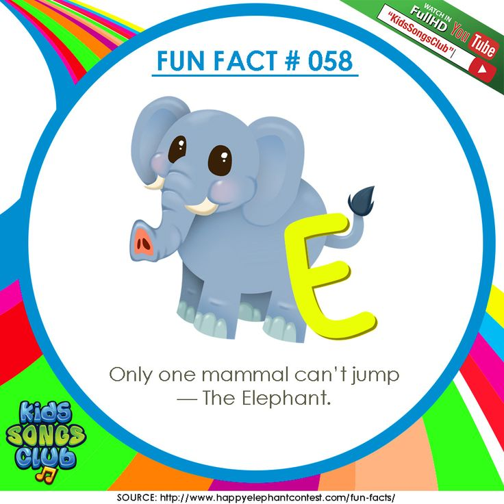 Do you know words that starts with the letter E? Share