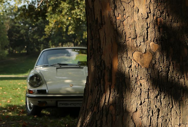 @mashmotor #porsche #porschelove #911 #911S #onthesly #auto #love #car #porsche911 #aircooled #ivory #veteran #mashmotor #wood #forest #garden #nature #parking #photo #myphoto #color #light #green #luxury #planetree #canon #love #heart #porsche911s #sportcar #restoration #aircooled