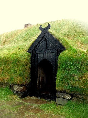 Viking Door! It's awesome! I love it!