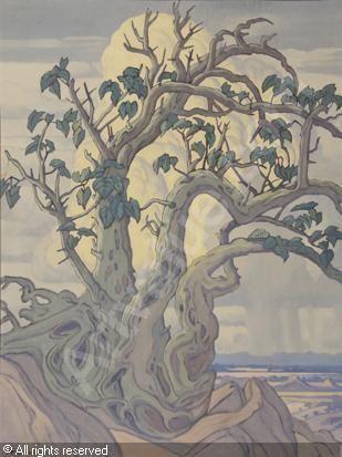 Wild Fig Tree   by Jacobus Hendrik Pierneef