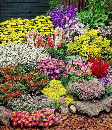 """Der winterharte, große Staudengarten begeistert Jahr für Jahr mit seiner Blütenfülle. Er umfasst 14 kräftige Stauden, von jeder Sorte 1 Staude: Schafgarbe """"gelb"""", Edelrittersporn, Witwenblume, Gartenlupine, Frauenmantel, Schleierkraut, Kissenaster, Freilandgloxinie, Prachtspiere (Astilbe), Fingerkraut, Mauerpfeffer, Roter Thymian, Thymian und bunte Margerite."""