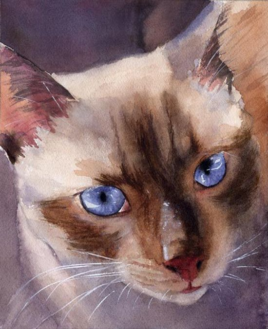 "Siamese watercolor. Reminds me of ""Jelly Belly"" - a great mother,mouser and beloved pet."