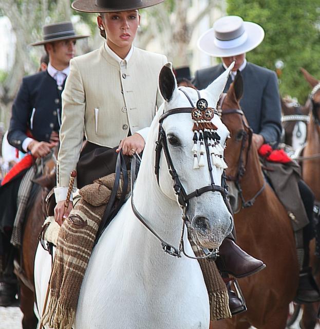 Spanish horse and rider - Feria de Sevilla 2010