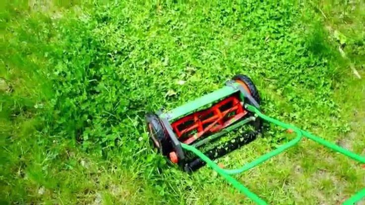 Best Reel Lawn Mower Reviews 2016
