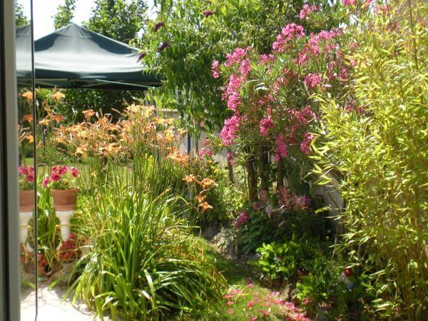 17 meilleures id es propos de jardin h m rocalle sur pinterest plantation de vignes plantes. Black Bedroom Furniture Sets. Home Design Ideas