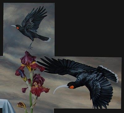 Artist by Nature: Photos and Art by Mandy Hague, Whakatane. NZ Birds: latest painting stage three