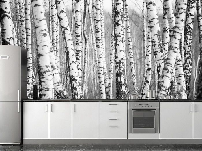 JP London Birch Forest Ultimate Wall Mural Peel And By JPLondon