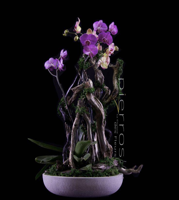 Orchid Decoration by M.Florist Pierros V.