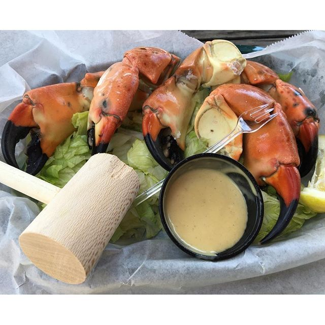 1 pound of #StoneCrab claws at #ICsharks. Beautiful waterfront view with gorgeous weather. It doesn't get better | #StPeteEats #StPete #seafood #stonecrabclaws @icsharks