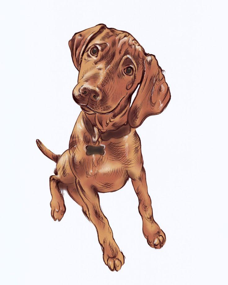 Un preferito personale dal mio negozio Etsy https://www.etsy.com/it/listing/259035826/ritratto-di-cane-personalizzato-ritratto