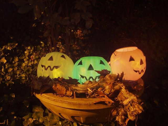 i adore these plastic halloween decorations with solar lights inside what a - Solar Halloween Decorations