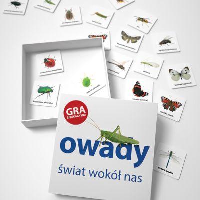 Poznaj małych mieszkańców polskich łąk, lasów i ogrodów. Gra edukacyjna memo Owady dostępna w sklepwkropki.pl