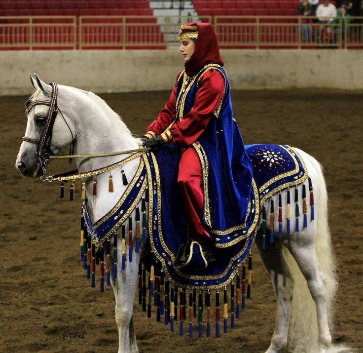 358 best Arabian costume horses images on Pinterest ...