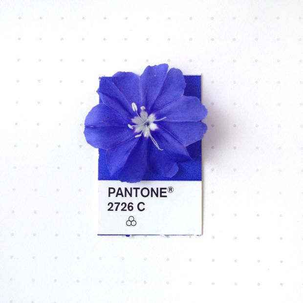 Satisfying Pictures of Found Objects Matched with their Pantone Color   Mental Floss