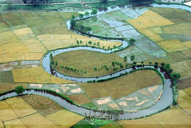 Bangladesh from above, a very agricultural land, many poverty-stricken souls I would love to help!