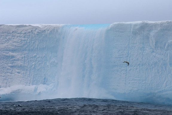 Melt water cascades from the top of iceberg