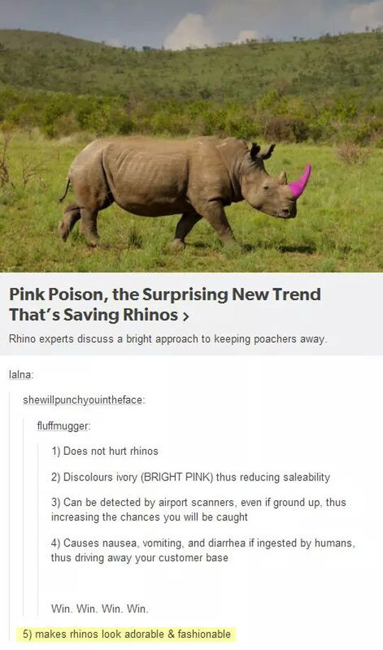 Please Let This Be Real||| it is, and it's saved so many lives. The pink horns (they do it to elephant tusks too) makes the ivory worthless, and less and less are being poached.