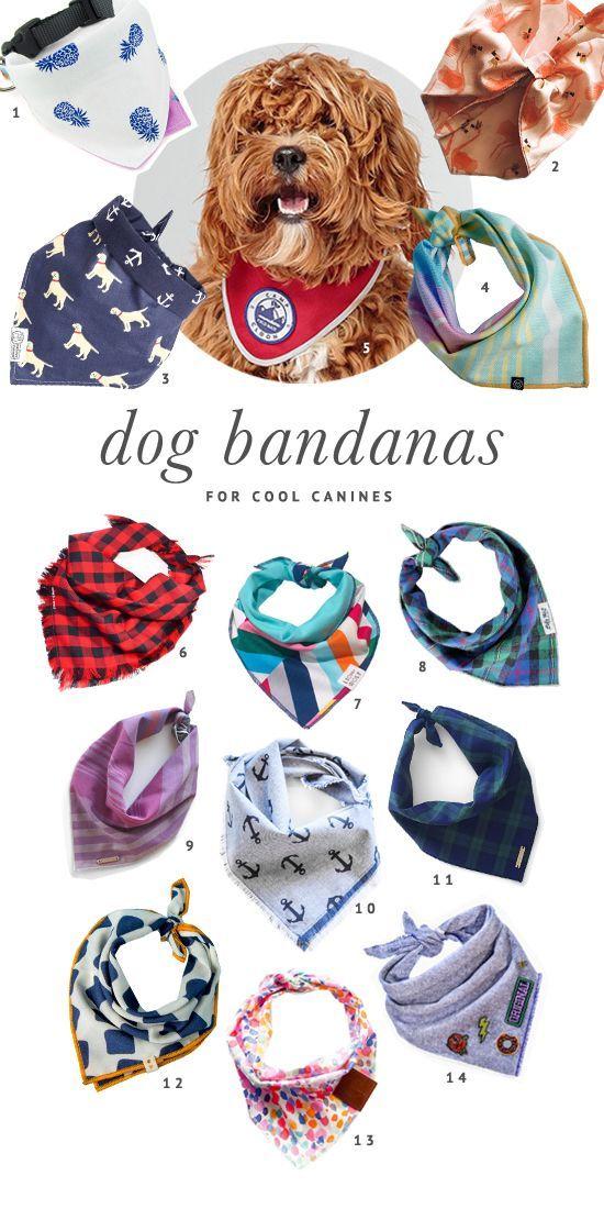The BEST dog bandanas for every shape and size of dog. Includes reversible dog bandanas, vintage bandanas, collar bandanas and more - plus where to buy.