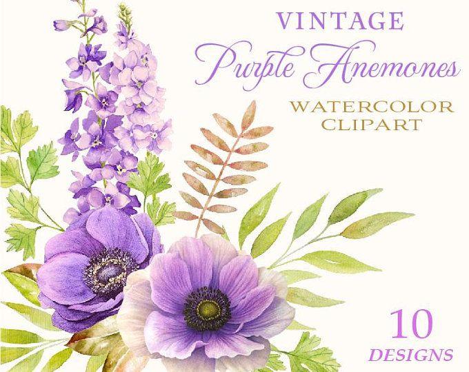 Purple Flowers Watercolor Succulents Watercolor Purple Etsy In 2020 Flower Clipart Digital Flowers Anemone Flower
