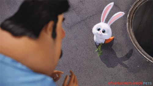 Official movie site for The Secret Life of Pets, starring Louis C.K., Eric Stonestreet and Kevin Hart. Watch the trailer here! In theaters and RealD 3D July 8
