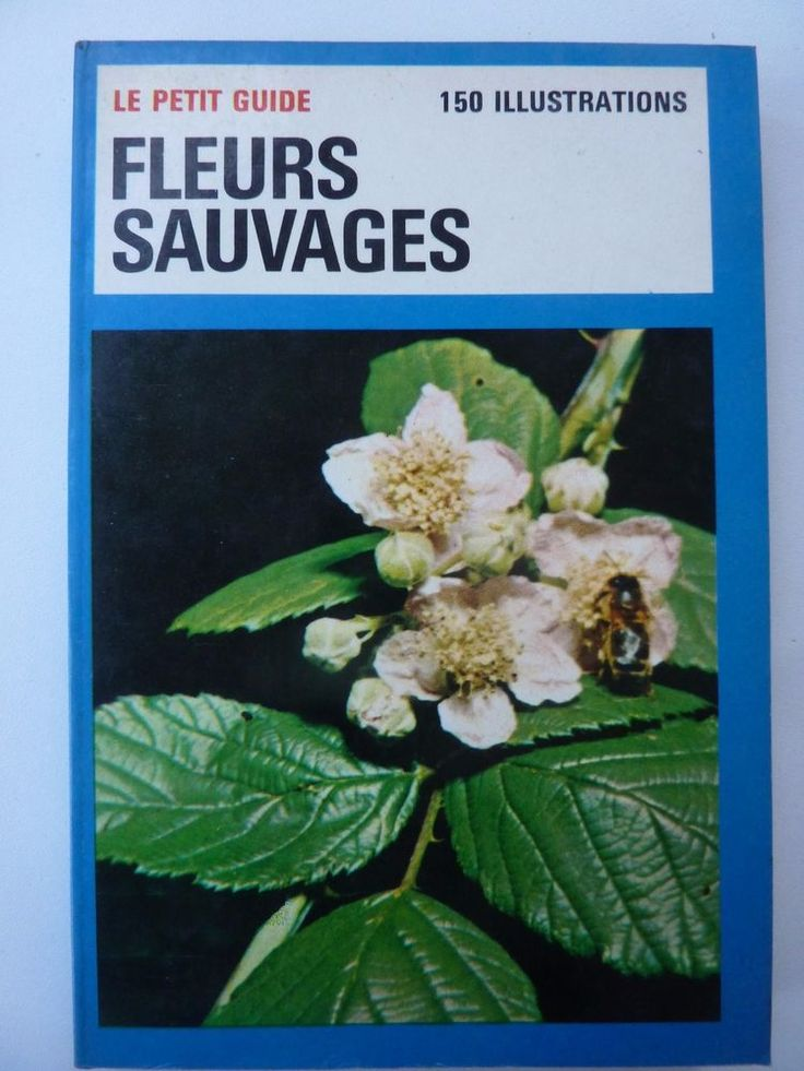 Guide Fleurs Sauvages