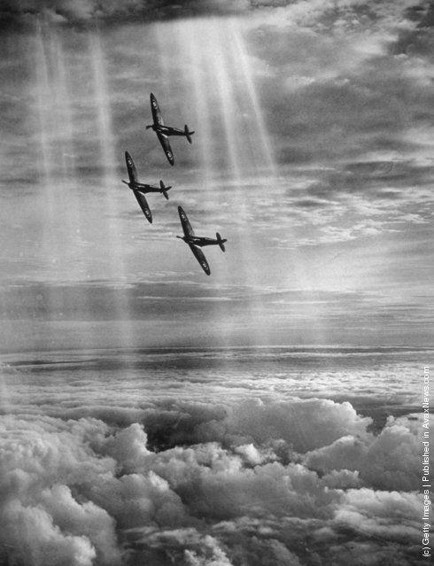 Tre Spitfire in formazione, aerei dell'aviazione britannica utilizzati durante la seconda guerra mondiale. - Black Camelot -