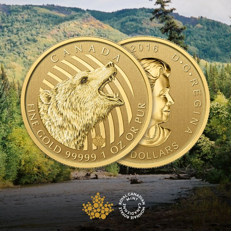The 1oz Roaring Grizzly Bear Gold Coin from the Royal Canadian Mint is available now. Despite its sometimes fearsome reputation, the grizzly bear is actually a shy, solitary creature that lives a relatively calm life in the forests and mountains of Canada's northwest and northern mainland. The grizzly is often recognised for catching salmon and fish but about 90% of their diet is actually vegetation, spending most of their time foraging berries and other vegetables. Order yours today!