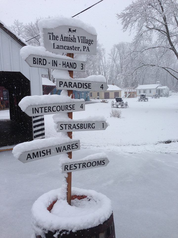 Amish Village #golancasterpa #lancasterpa #christmas #winter #snow #amishvillage