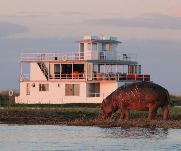 Relax on the deck while the kids spot wildlife along the banks, or go on exciting game viewing, fishing and cultural adventures together. There's something for the whole family to enjoy.  #FamilyTravel #TravelwithKids #HolidayswithKids