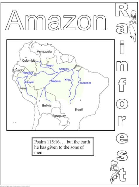 Rain Forest Amazon Physical Geography Rainforest