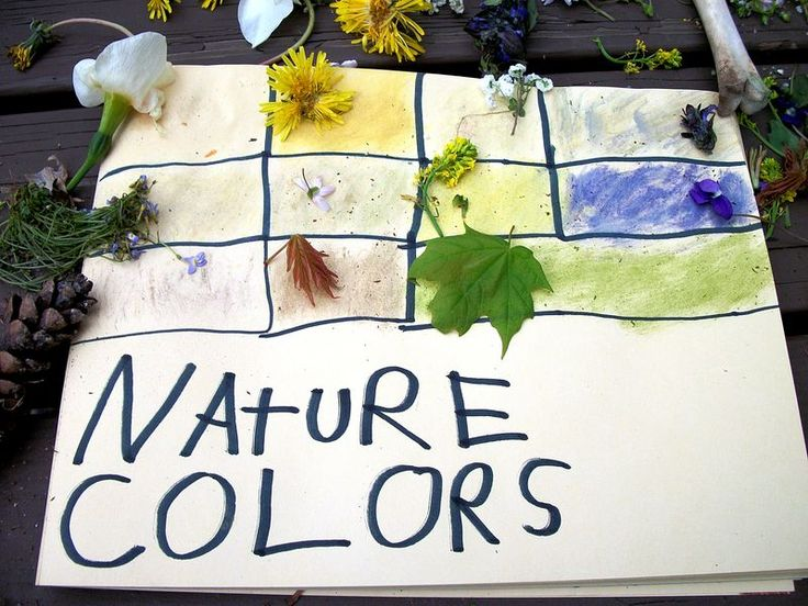 nature colors...next time you have a child that doesn't feel like playing in the woods/at the park? send them on a hunt for different colors in the surrounding nature