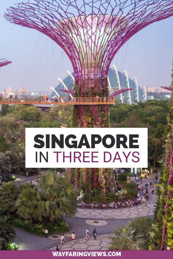 A 3 Day Singapore Itinerary For Art And Nature Lovers Asia Travel Singapore Travel Singapore Itinerary