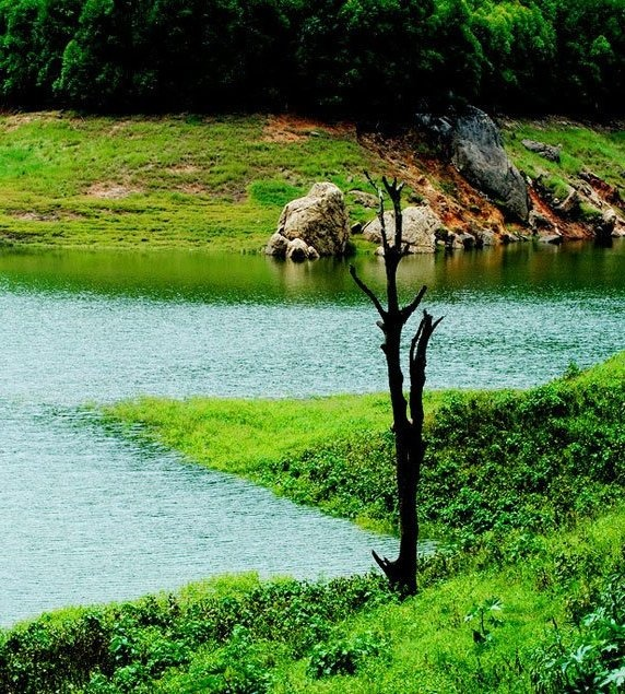Kerala Places To Visit: 28 Best Images About Munnar Tourism Information On
