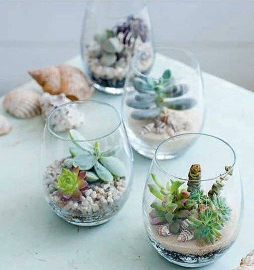 Succulent Wedding/ Party Favors or a cute way to share cuttings from your unruly succulents with friends