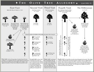 Jacob 5 Olive Tree Allegory Explained; actually made sense!