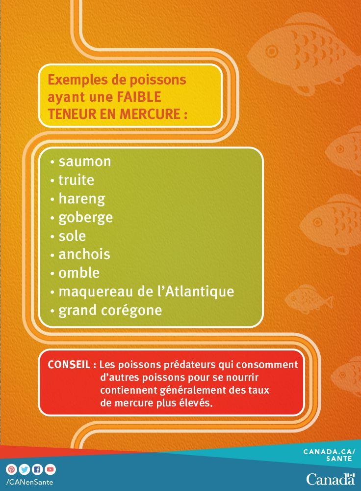 Apprenez tout ce qu'il faut savoir sur les concentrations de mercure dans le poisson :  http://www.hc-sc.gc.ca/fn-an/securit/chem-chim/environ/mercur/merc_fish_qa-poisson_qr-fra.php?utm_source=pinterest_hcdns&utm_medium=social_fr&utm_content=jan17_omega&utm_campaign=social_media_14
