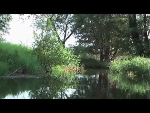 Paddeln im Spreewald - Ein herrlich langweiliges Video (Brandenburg)