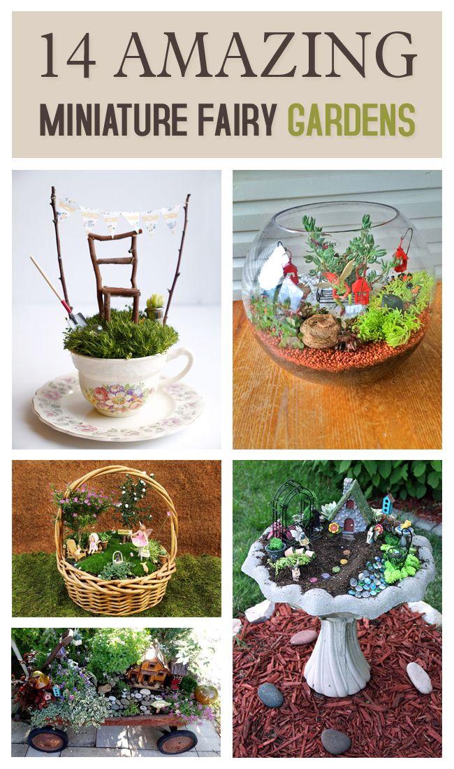 Gnome In Garden: 25+ Unique Indoor Fairy Gardens Ideas On Pinterest