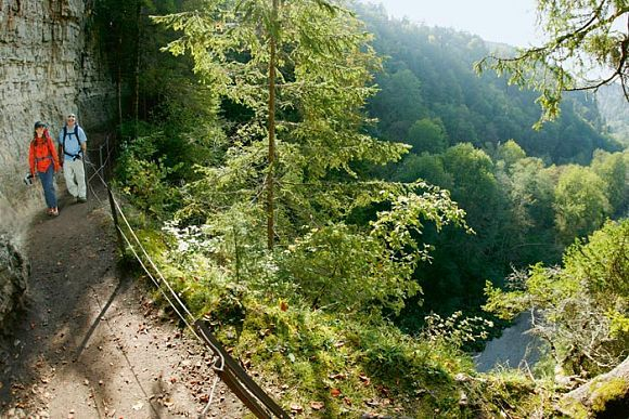 Der Schluchtensteig im Schwarzwald: Sieben Schluchten, ein Weg