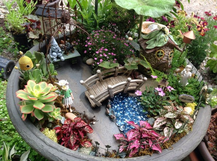 mini fairy garden with gnome watching over it
