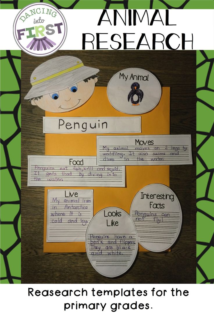 A variety of templates to choose from for students to record information for a research project. Templates are for primary grades.