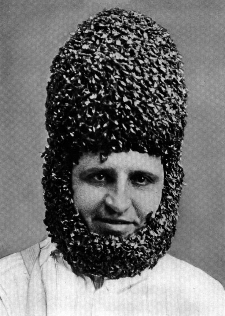 A Helmet and Chin Strap of HoneyBees, Ohio, 1929 Bee