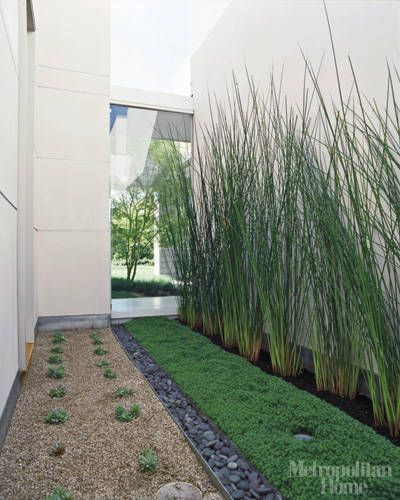 Use tall grass against the windows for a natural privacy for Best tall grasses for privacy