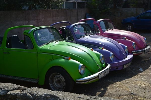 converted beetles in red, purple and pink