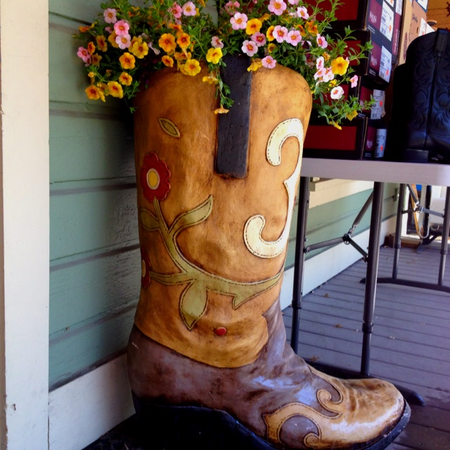 1000  images about Uses for COWBOY BOOTS on Pinterest | Planters ...