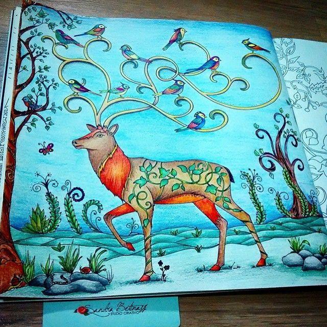Floresta Encantada Cervo Johanna