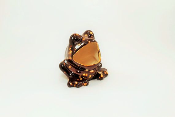 Frog Planter Frog Herb Keeper Frog Sponge by ClockworkRummage