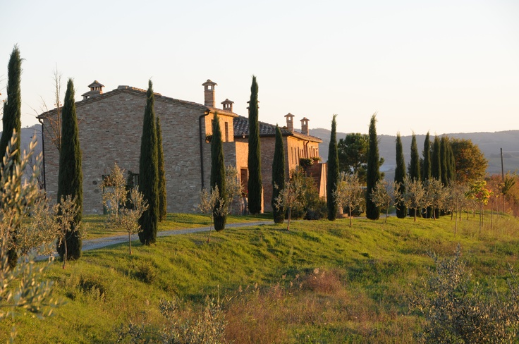 Podere Salicotto: view from the parking area