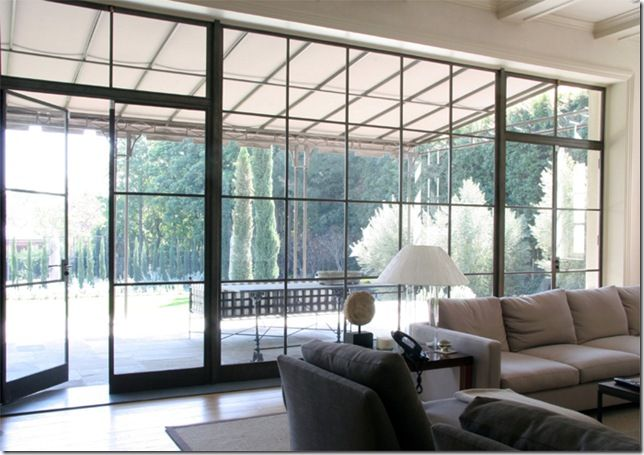 Steel windows allows for thinner frame profiles and more glass.